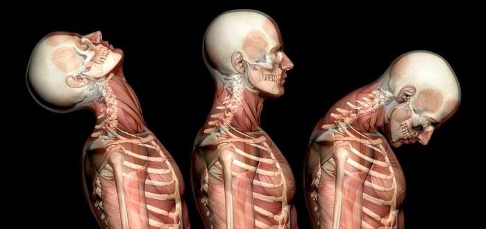 تمرینات قدرتی برای درمان آسیب شلاقی گردن