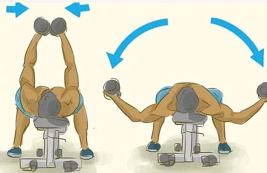 حرکت-پروانه_ای-با-دمبل-بر-روی-سینه-را-تمرین-کنید