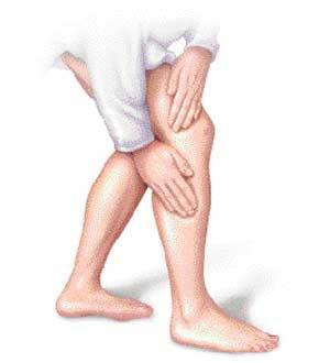 ساق-پا