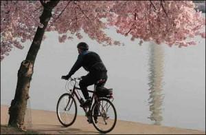 bicycling-300x196