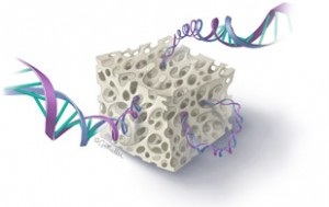 gene-300x189