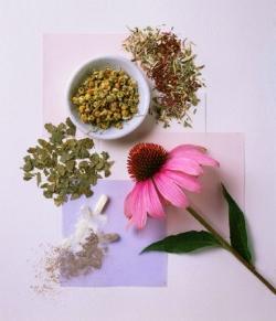 teb---herbal
